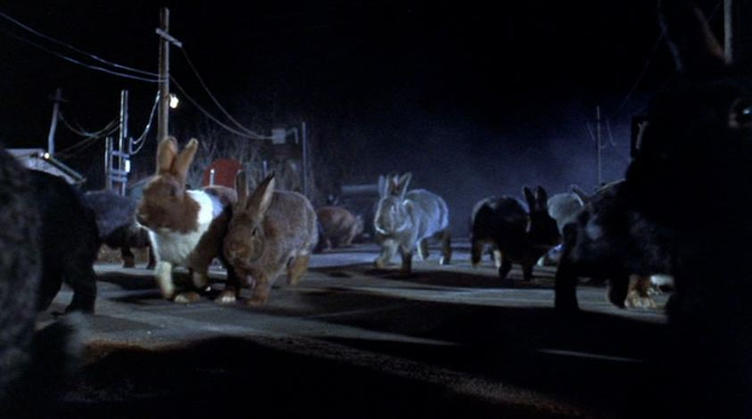 Monster Monday: Night of the Lepus