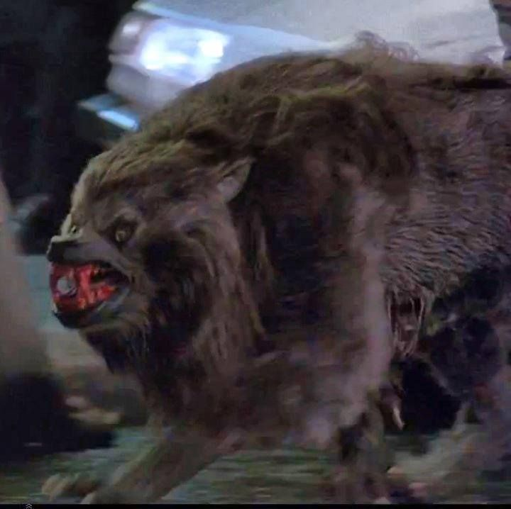 Monster Monday: An American Werewolf in London