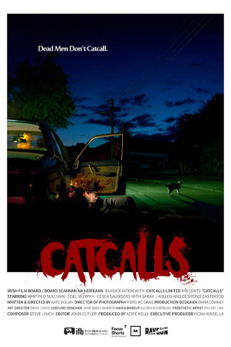 Image: Movie poster for Catcalls. A car is parked on a street at night. The passenger door is open, with a bloody body falling out of it. A cat stands nearby.