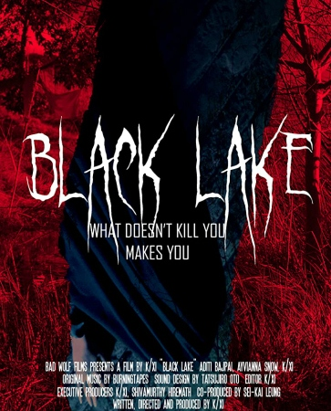 "Image: A black figure stands against a red forest background. Text: ""Black Lake: What doesn't kill you makes you."""